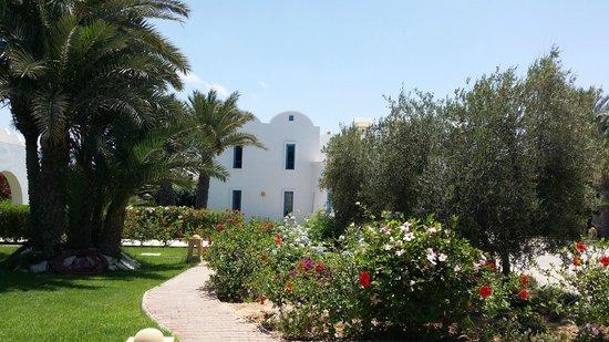 Menzel Dija: jardins