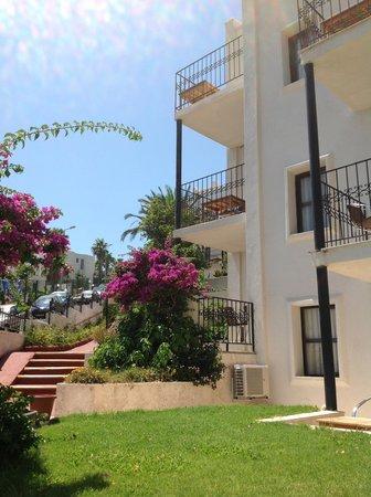 Rosso Verde Hotel: jardin