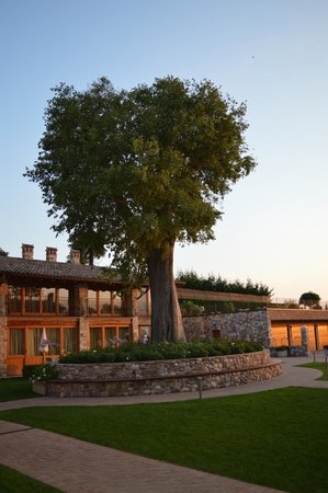 Residence Borgo Mondragon: mooie tuin
