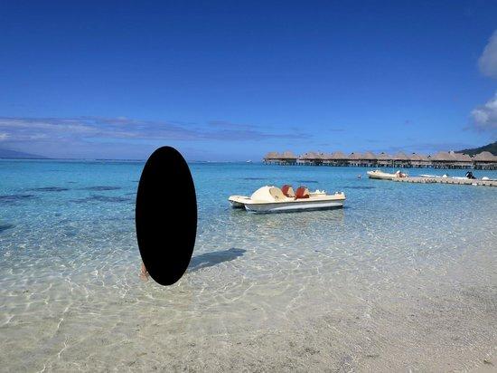 Sofitel Moorea Ia Ora Beach Resort: beautiful beach & lagoon!