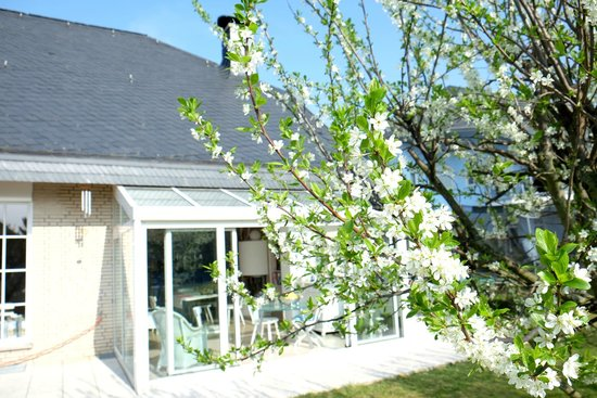 Villa Orchard: Surrounded by orchards