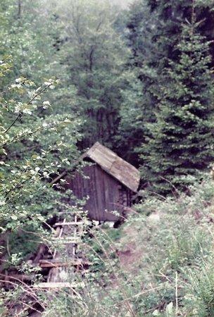 Mühlenwander- und Kneippweg Kaning: Am Mühlenweg-4-