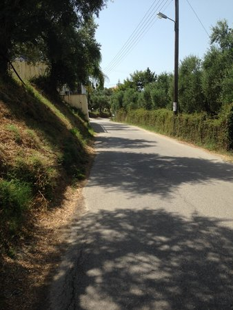 Zante Star: road to the hotel so lovely and peaceful but only 10 mins to town