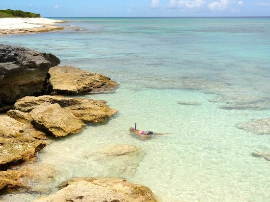 Malcolm's Road Beach: snorkel by the rocks