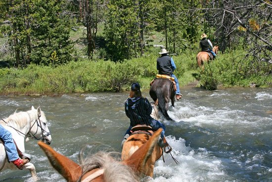 T Cross Ranch: Crossing streams-