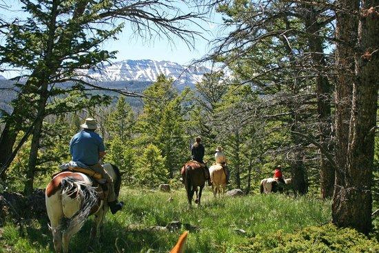 T Cross Ranch: Trail Riding vistas-