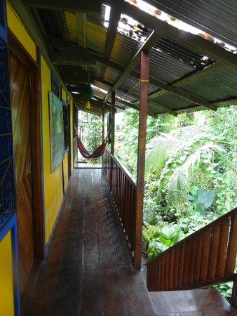 Cabinas Coconut Grove: 1st floor