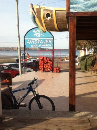 Hosteria Puerto Palos: view from coffe shop