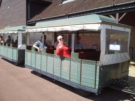 Denbies Wine Estate: The little train