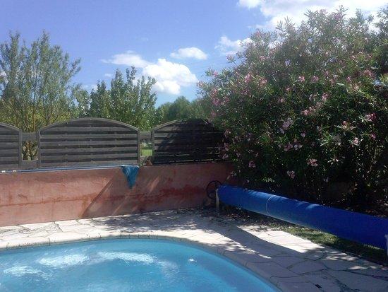Le Mas de la Grave : piscine