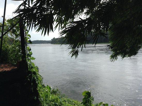 Yogalife Homestay: the river Periyar at the Kudanadu elephant training camp (a short drive away)