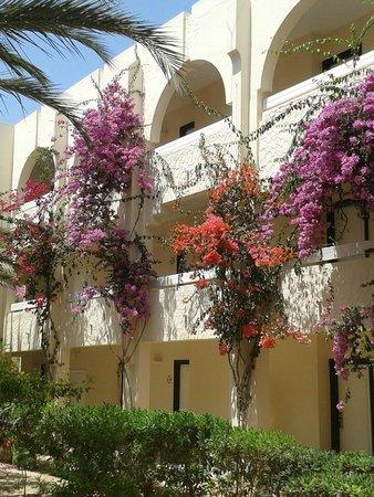 IBEROSTAR Mehari Djerba : panoramica stanze