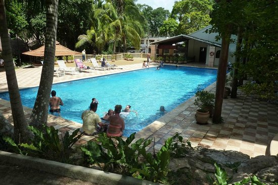 Gray Line Tours: The pool at the hotel by the site