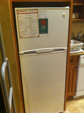 Westgate Smoky Mountain Resort & Spa: great fridge with ice maker