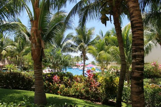 Azul Beach Resort Sensatori Mexico: Grounds