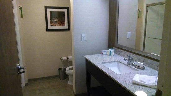 Hampton Inn & Suites Baltimore / Woodlawn: Bathroom