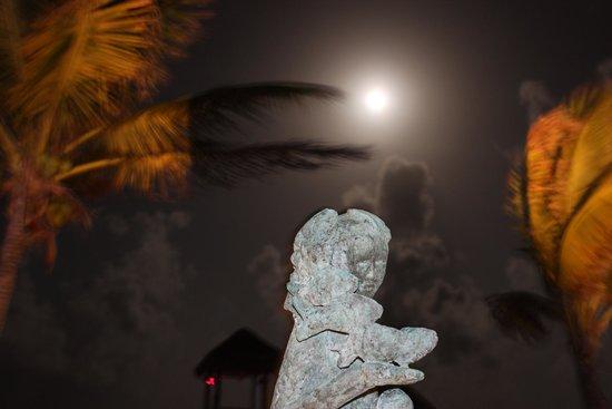 Azul Beach Resort Riviera Maya : July 14 evening