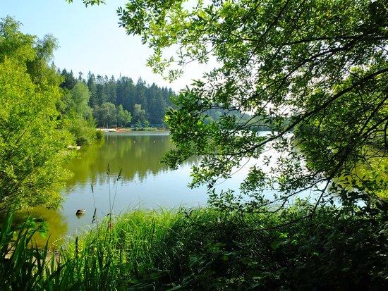 Center Parcs Longleat Forest: Lake by Jardin des Sports
