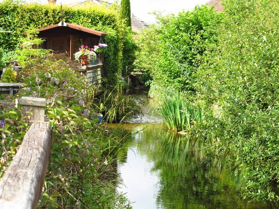 Fingle Bridge Bed and Breakfast: Beautiful stream next to the house