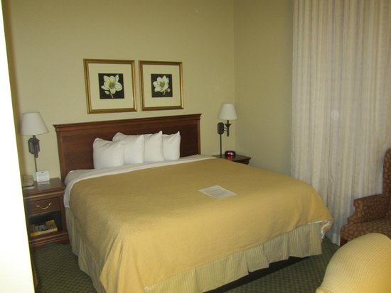 Country Inn & Suites By Carlson, New Orleans French Quarter : Standard king room