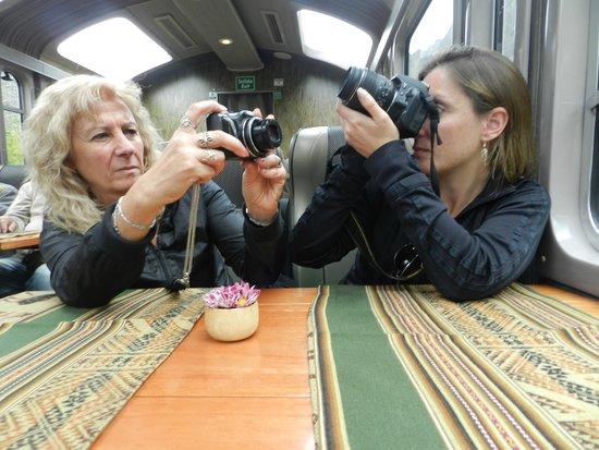 PeruRail - Vistadome: Vista interior del tren