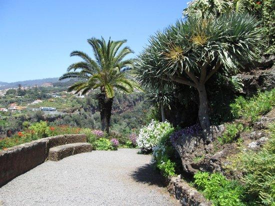 Madeira Botanical Garden : Nice vista