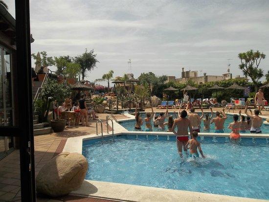 Hotel Alba Seleqtta: pool