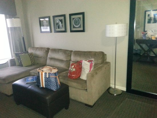 HYATT house Sterling/Dulles Airport-North: Sleep Sofa
