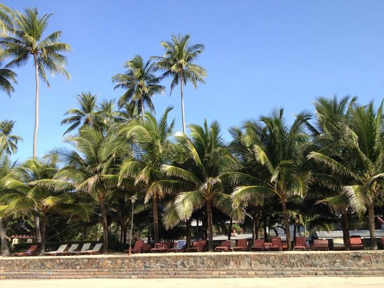 Oriental Pearl Resort : вид на отель