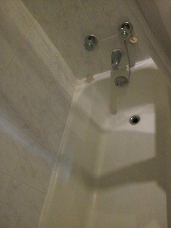 The Inn at Dromoland: bath room 261