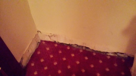All'Angelo Hotel: Moisture damage to the walls lower part