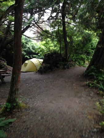 Wya Point Resort: Another camp site