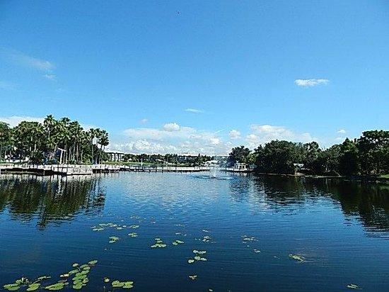 Marriott's Cypress Harbour Villas : Lake
