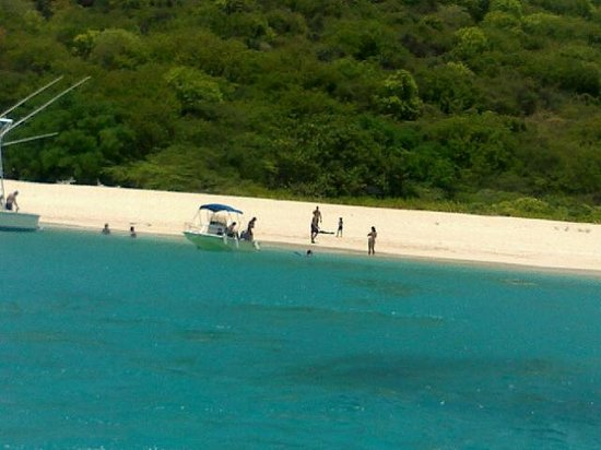 Caribbean Sea Adventures: Buck Island's Breathtaking Beach Great place to swim and relax