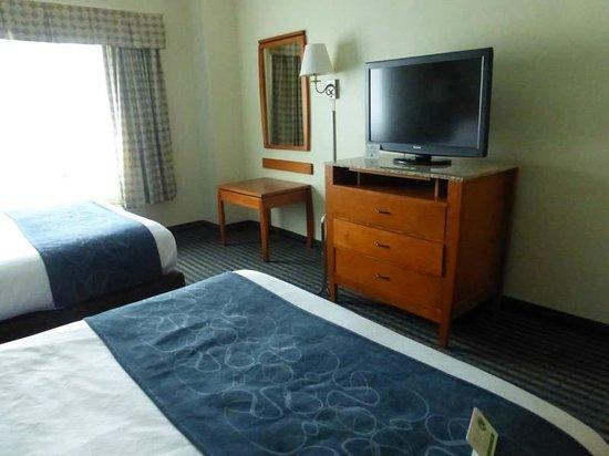 Comfort Suites Leesburg: Room