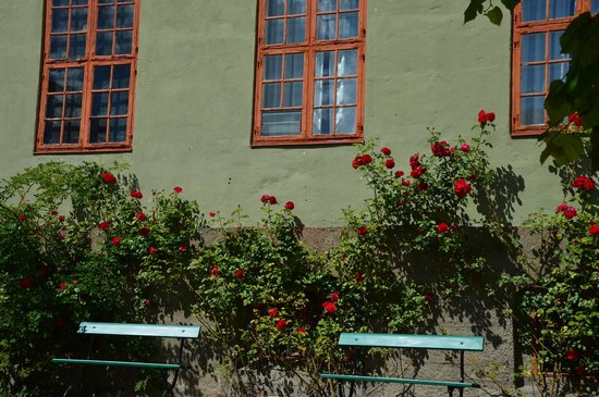 The Norwegian Museum of Cultural History: Pretty flowers