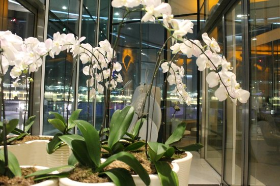 Yas Viceroy Abu Dhabi: hotel details