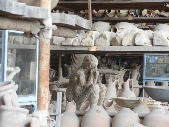 APTours Driver Tour Service: Pompeii