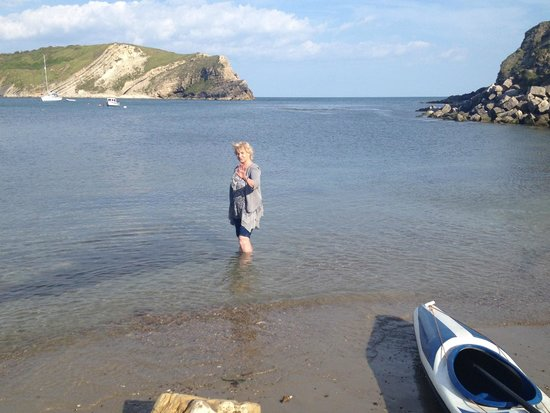 Bindon Bottom B&B: Enjoying a paddle at Lulworth Cove