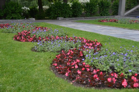 Museo de Vigeland: Pretty flowers