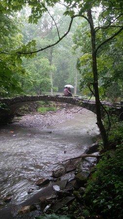 Robert Treman State Park : Beautiful and peaceful spot