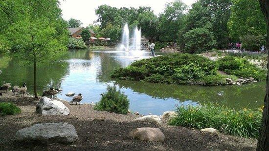 Fort Wayne Children's Zoo: Plenty of shade