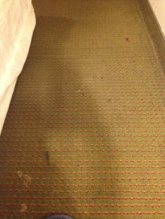Knights Inn Sea Tac Airport: Carpet in Bedroom area