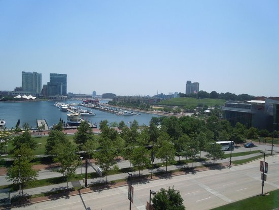 Royal Sonesta Harbor Court Baltimore : our gorgeous view from room