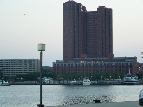 Royal Sonesta Harbor Court Baltimore : Hotel