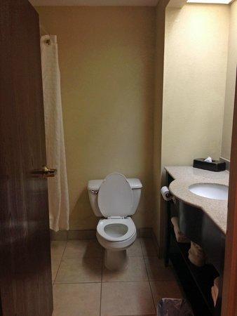 La Quinta Inn Pigeon Forge Dollywood : bathroom