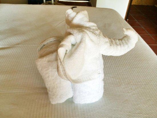 Beachfront Hotel La Palapa: Такие вот слоники - полотенца встречают гостей в номерах