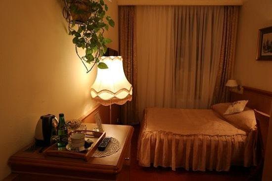Europejski Hotel: 客室