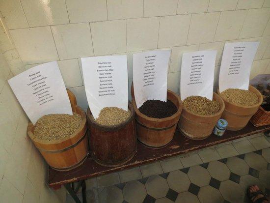 Eggenberg Pivovary : malt and hops