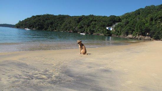 Lopes Mendes Beach : Dos playas antes de llegar  Lopes Mendes